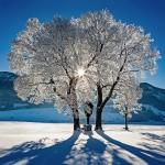 Peter Ramge - Wintermorgen