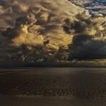 Martina Wolf - Nordseeküste