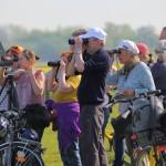 Manfred Eimers - Birdwatching