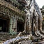 DS7_6155_Ta_Phrom_Angkor_Kambodscha Kopie