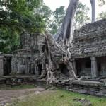 DS7_6891_Preah_Khan_Angkor_Kambodscha Kopie