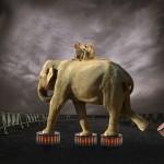Peter Laux - Zirkus