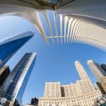 Hartwig Stark - World Trade Center