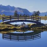 Gerhard Werz - Brücke über den See
